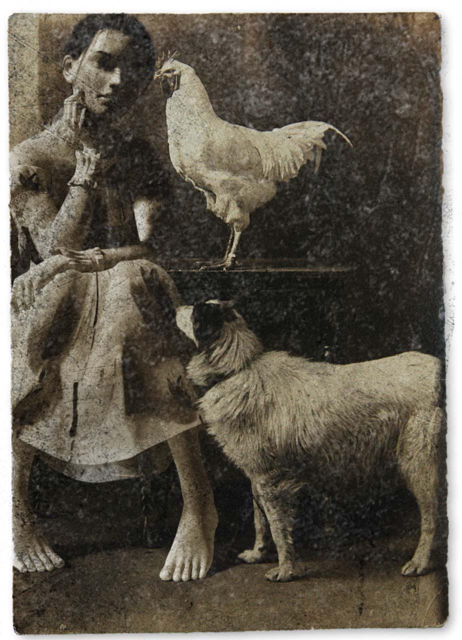 Felina Schrödinger, undatierte Photographie.