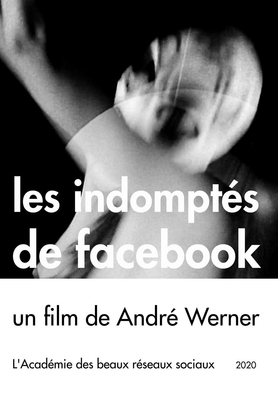 Les indomptés de facebook, un film de André Werner. Poster